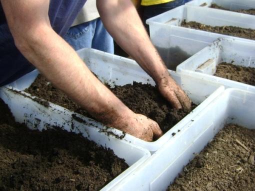 Digging!