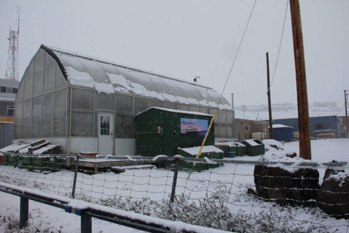 July 3rd snow on the greenhouse