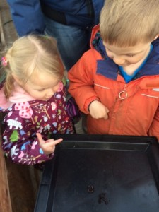 Aakuluk day care kids checking out our vermicomposting system!